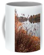 Mirror Smooth River Coffee Mug