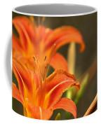 Mirrored Close Up Coffee Mug