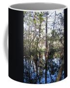 Mirroring The Swamp Coffee Mug