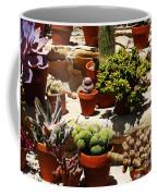Mission Cactus Garden Coffee Mug