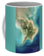 Mississippi River Delta, 2001 Coffee Mug