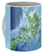 Mississippi River Delta Coffee Mug