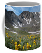 Missouri Mountain And Wildflower Landscape Coffee Mug