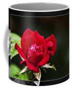 Mist Of Love Coffee Mug