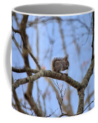 Mister Squirrel Coffee Mug
