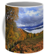 Misty Day In The Cairngorms II Coffee Mug