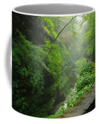 Misty Evening At Watkins Glen Coffee Mug