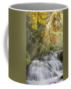 Misty Falls At Coker Creek Coffee Mug