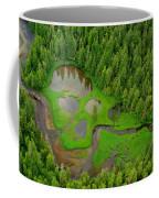 Misty Fjord Coffee Mug