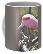 Misty Morning Spoonbill Coffee Mug