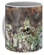 Misty Moss Coffee Mug
