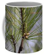 Misty Pines In Spring 2013 Coffee Mug