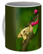 Mocker Swallowtail Butterfly And Berries Coffee Mug
