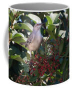 Mocking Bird And Berries Coffee Mug