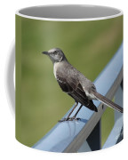 Mockingbird Perched Coffee Mug