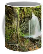 Mohawk Falls At Ricketts Glen Coffee Mug