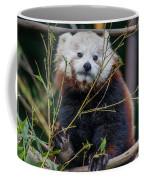 Mohu The Teenage Red Panda Coffee Mug