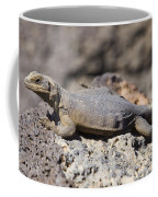 Mojave Desert Chuckwalla Coffee Mug