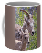 Momma And Baby Ram Coffee Mug