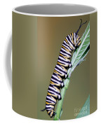 Monarch Butterfly Caterpillar Coffee Mug