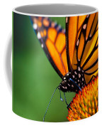 Monarch Butterfly Headshot Coffee Mug