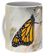 Monarch Butterfly Just Emerged From Her Chrysalis Coffee Mug