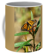 Monarch Butterfly On Plant With Eggs Coffee Mug