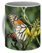 Monarch Feeding Coffee Mug