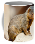 Mongoose Coffee Mug