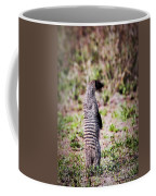 Mongoose Standing. Safari In Serengeti Coffee Mug
