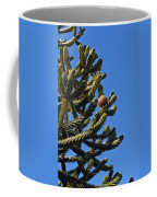 Monkey Puzzle Tree A Coffee Mug