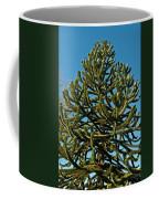 Monkey Puzzle Tree E Coffee Mug