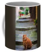 Montepulciano Cat Coffee Mug