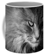 Moody Cat Coffee Mug