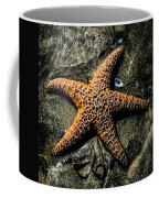 Moody Starfish II Coffee Mug