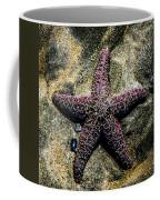 Moody Starfish IIi Coffee Mug
