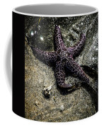 Moody Starfish Iv Coffee Mug