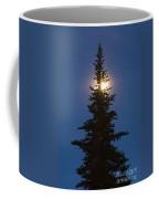 Moon Behind Spruce Coffee Mug