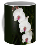Moon Orchid With Purple Center Coffee Mug