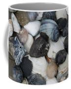Moon Snails And Shells Still Life Coffee Mug