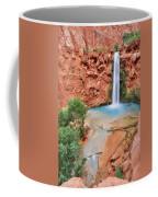 Mooney Falls Coffee Mug