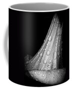Moonflower And Rainwater  Coffee Mug