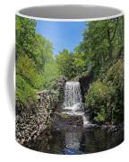 Moore State Park Waterfall 3 Coffee Mug