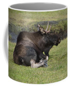 Moose At Rest Coffee Mug