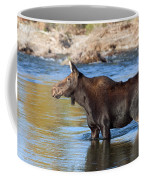Moose On The  Gros Ventre River Coffee Mug