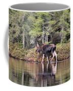 Moose_0586 Coffee Mug