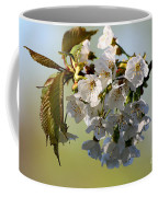 More Spring Flowers Coffee Mug