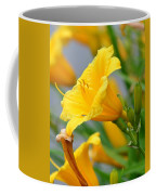 Morning Daylilies Coffee Mug