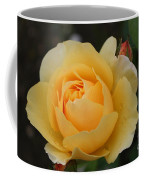 Morning Dew Rose Coffee Mug