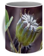 Morning Frost Coffee Mug